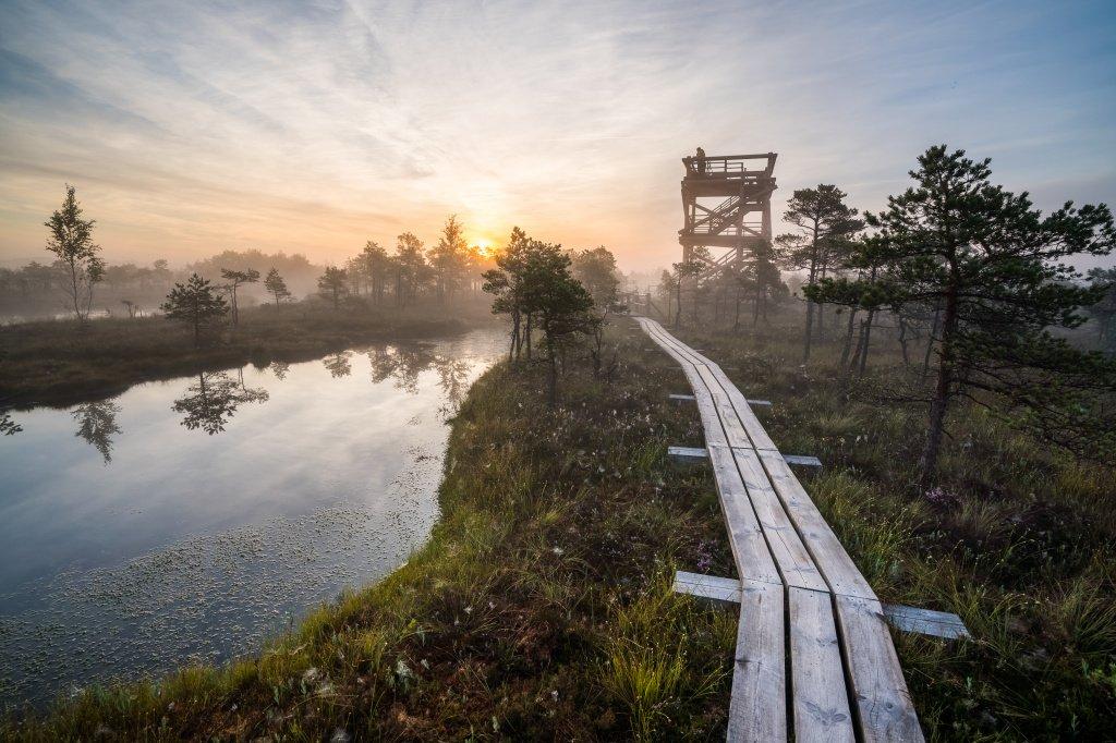Национальный парк Кемери, Юрмала, Латвия