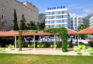 Blue Fish бронирование