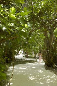 Dusit Thani Maldives бронирование