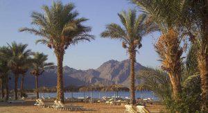 La Playa Beach Resort бронирование