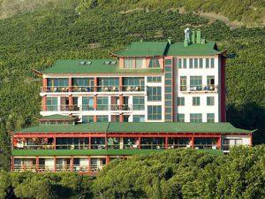 Веселый Хотэй отель бронирование