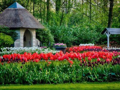Голландия, Парк цветов Кёкенхоф