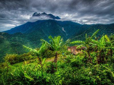 Малайзия, национальный парк Кинабалу